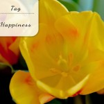De happiness tag