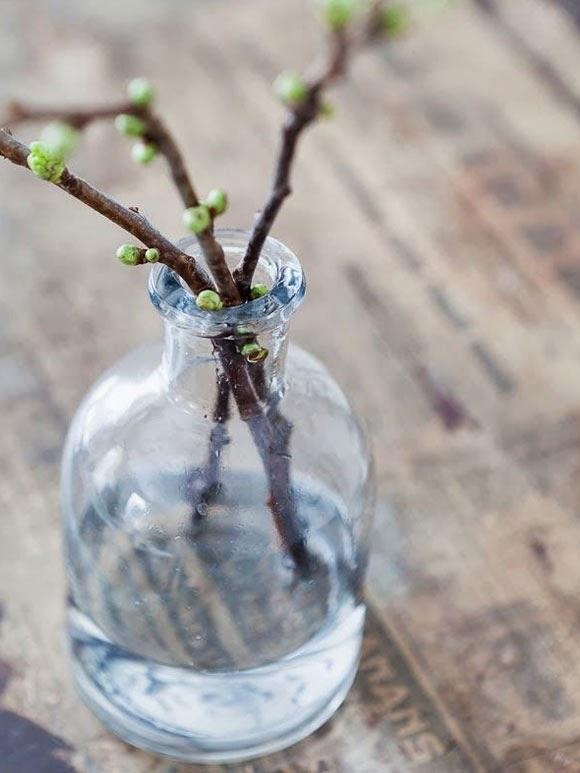Decoratie ideeën voor de lente