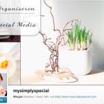 Organiseer je social media