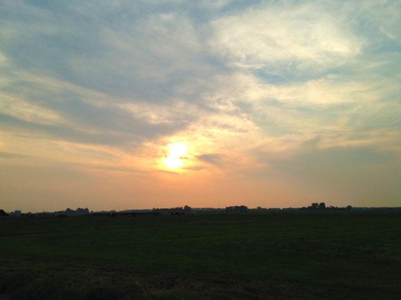 Dagboek: Eindelijk zomer