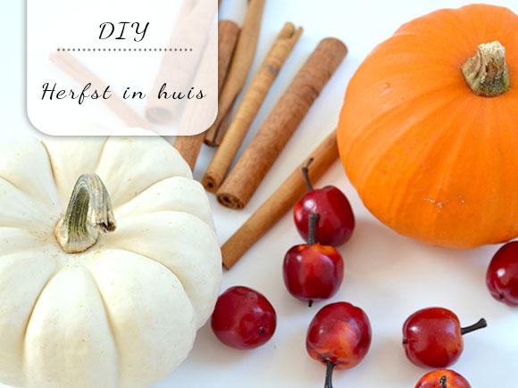 DIY: Herfst in huis