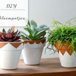 DIY: Leuke bloempotjes