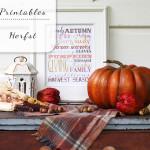 De leukste herfst printables