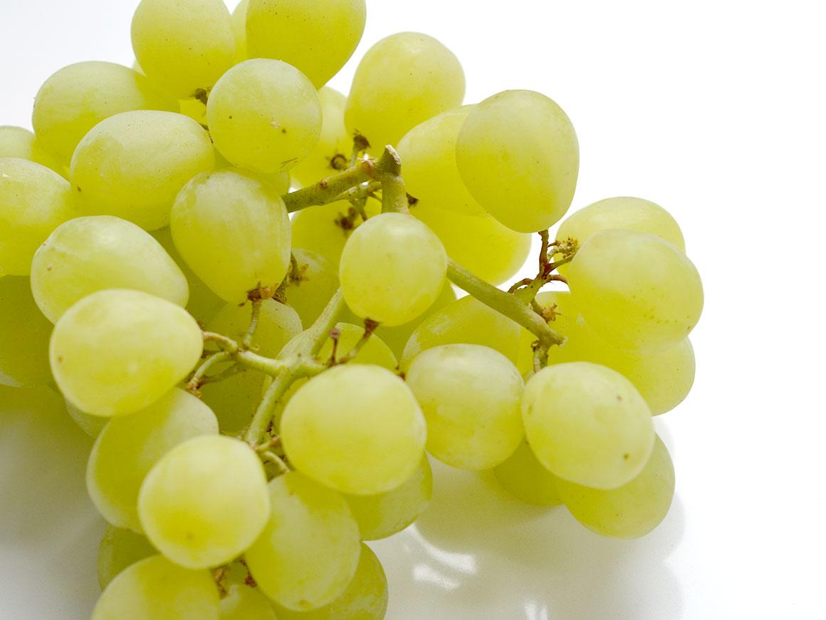 Bonbons van druiven