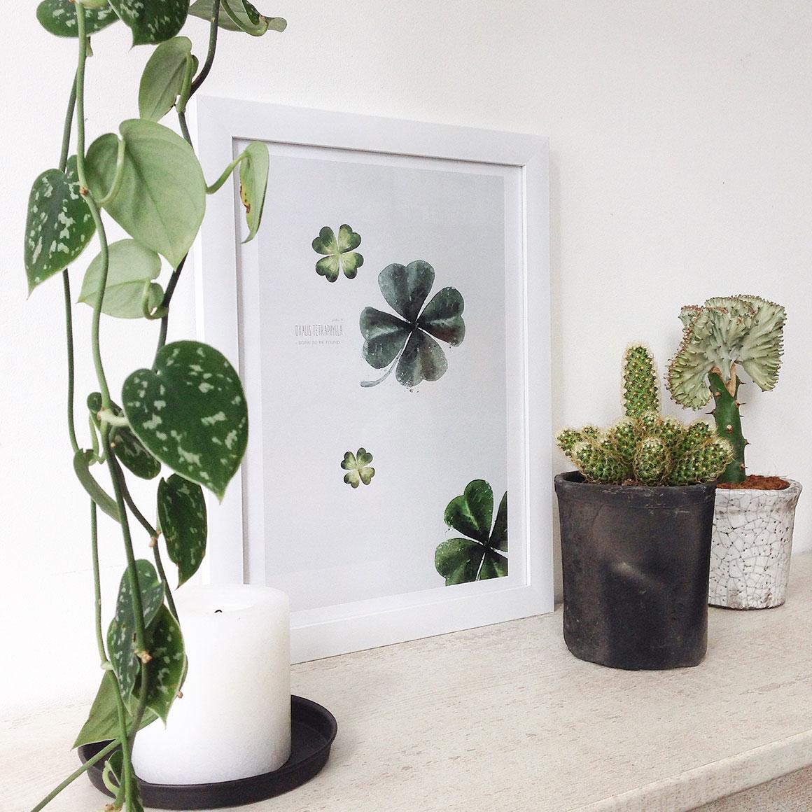 Kleur van het jaar: Groen in huis