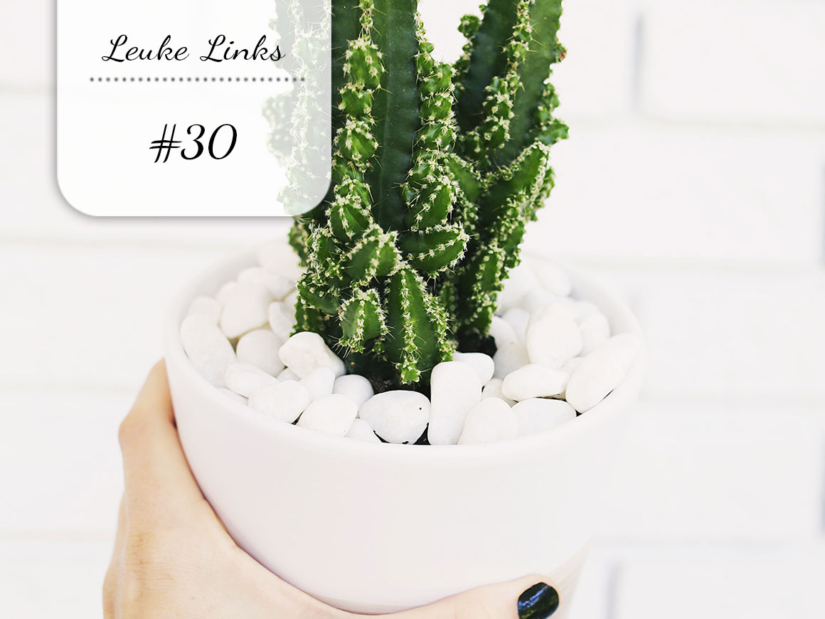 Leuke Links #30 & Spam je blog