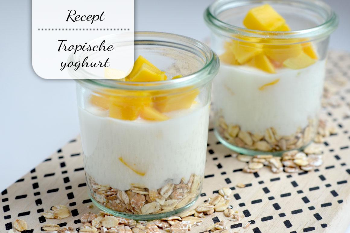 Tropische yoghurt met mango