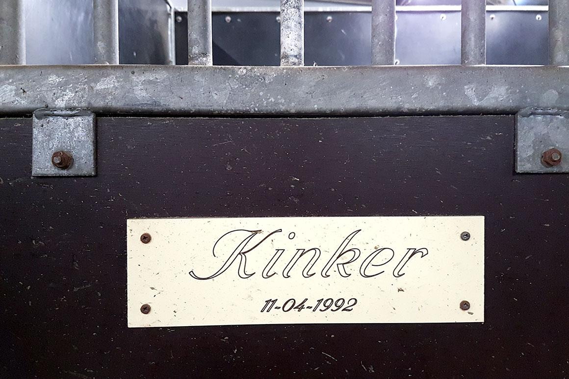 Dagboek: Dag Kinker