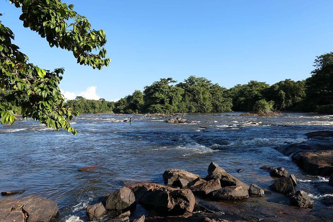 Dagboek: Suriname verkennen