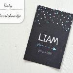 Baby update #1: Het geboortekaartje van Liam