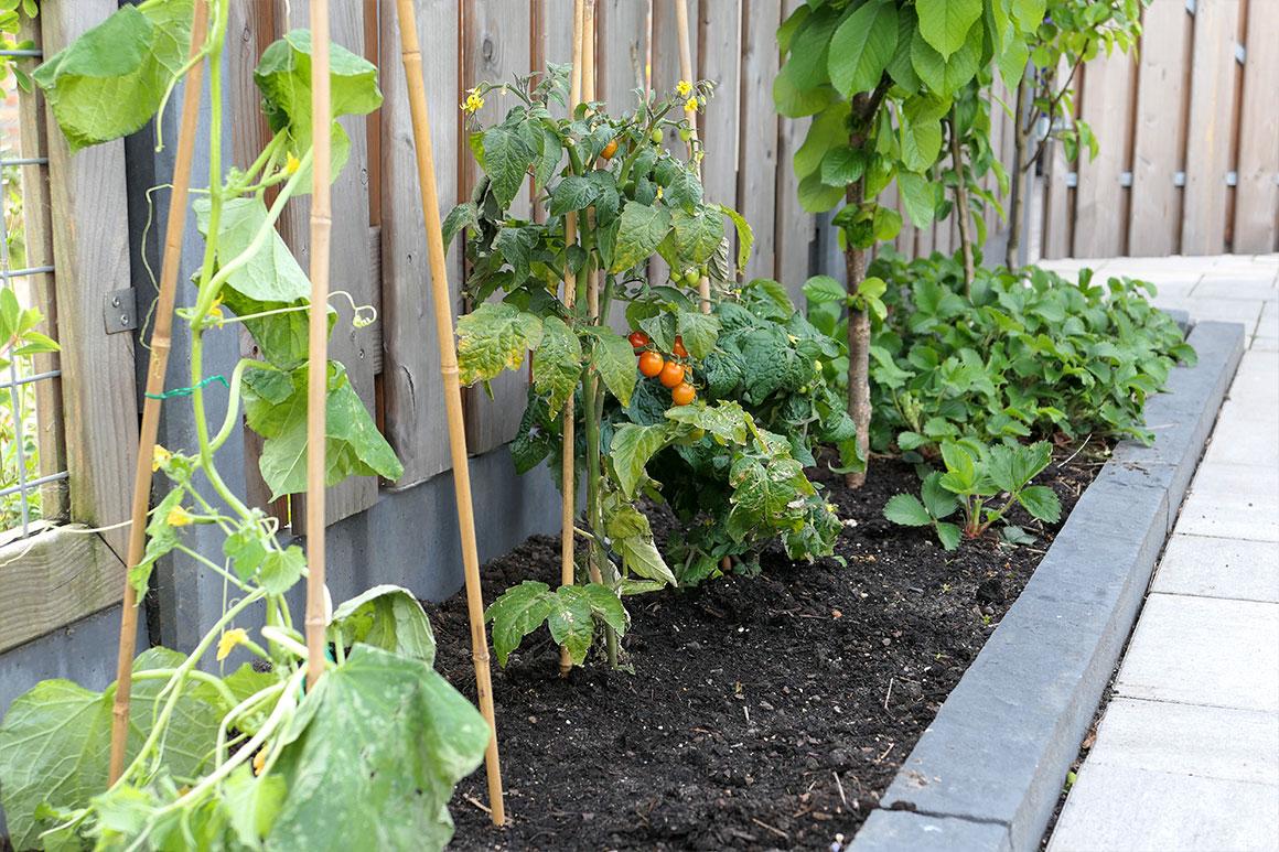 Ons nieuwe huis #23: De tuin