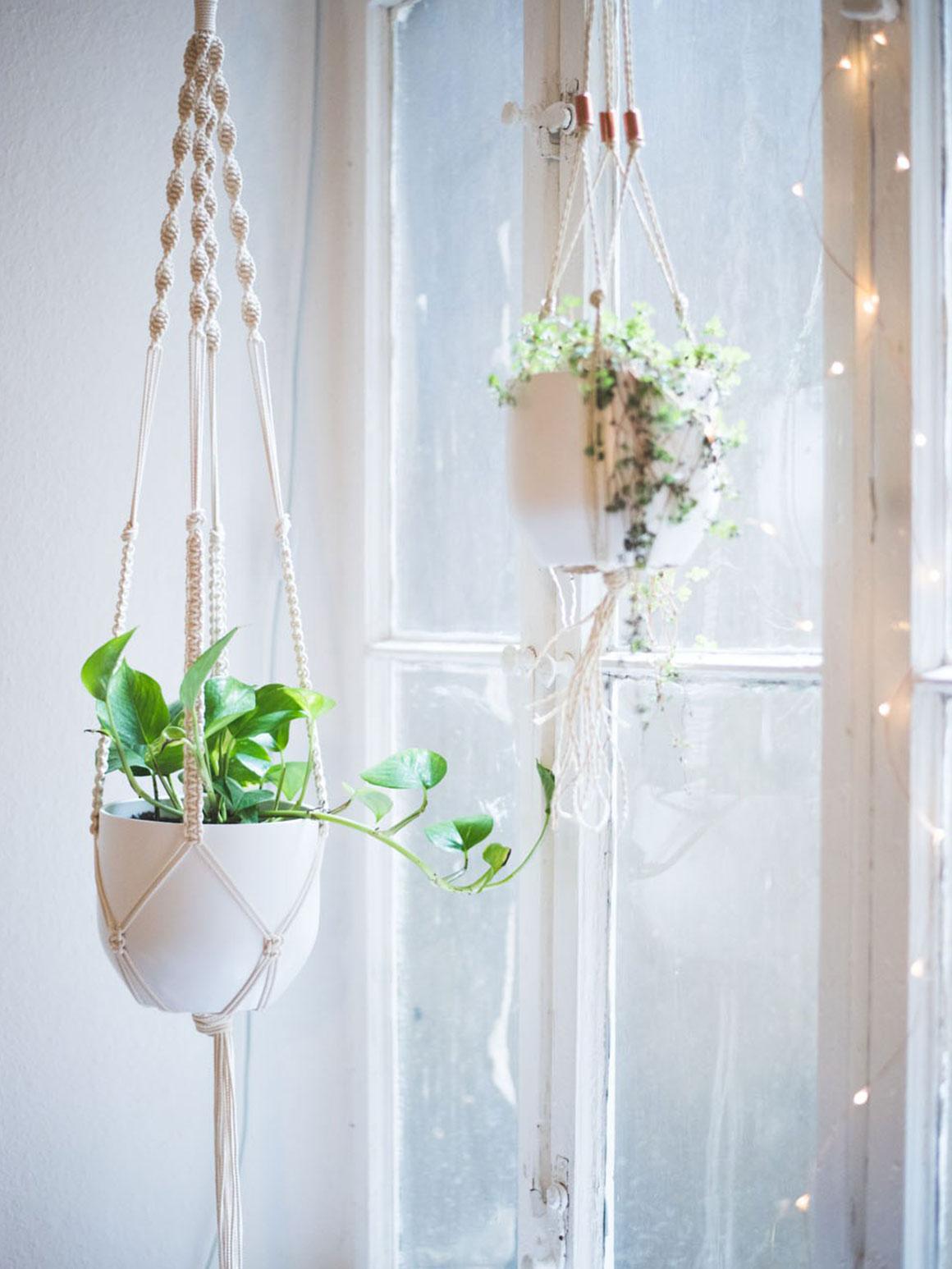 Variëren met plantenpotten